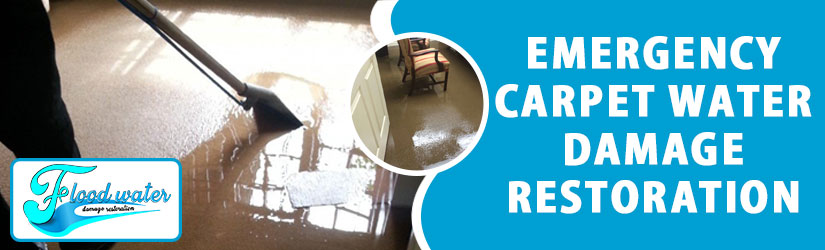 Emergency Carpet Water Damage Restoration Perth
