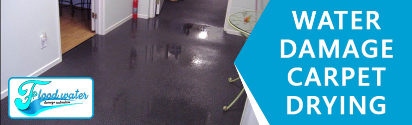 Water Damage Carpet Drying Perth