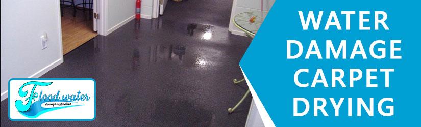 Water Damage Carpet Drying Perth