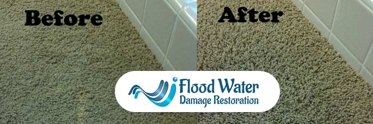 Carpet Cleaning With Bleach