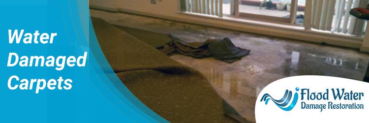 Water Damaged Carpets