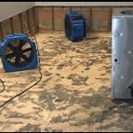 Carpet Sewage Cleaning Service Perth