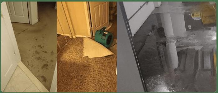 Emergency Carpet Water Damage Restoration Perth